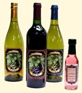 Make Wine Labels
